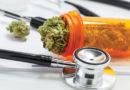 Ministerstvo zdravotnictví navrhuje úhradu léčebného konopí z veřejného zdravotního pojištění ve výši 90 %