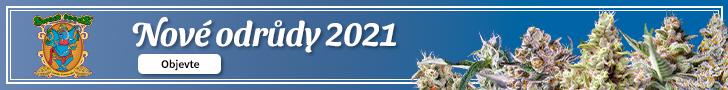 Sweet Seeds 2021